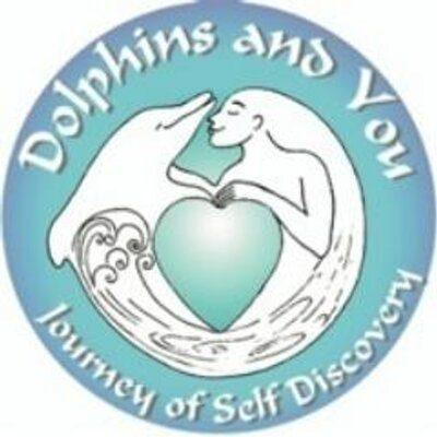 Dolphins & You