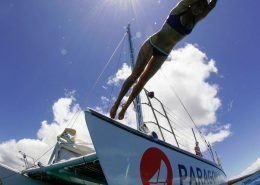Body Glove Cruises coralheader