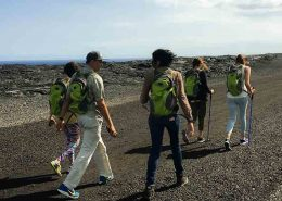Essential Hawaii Tours lava hike road