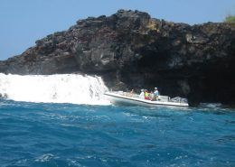 Sea Quest IMG