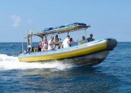 Sea Quest IMG  e