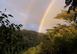 Temptation Tours hana coast double rainbow