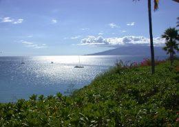 Temptation Tours maui snorkeling boats from wailea