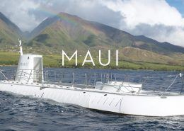 atlantisadventures MAUI