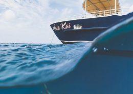 fair wind cruises surface