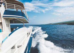 fair wind cruises wave