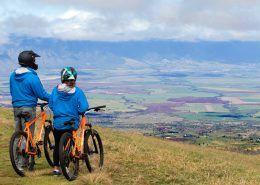 haleakala bike company v
