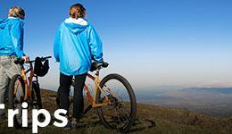 haleakala bike company eucalyptus ridingsidebar trips