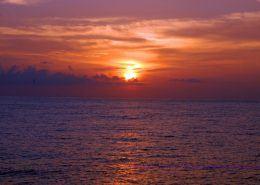 ocean joy cruises Photo Oct     AM