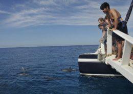 ko olina ocean adventures blue sky