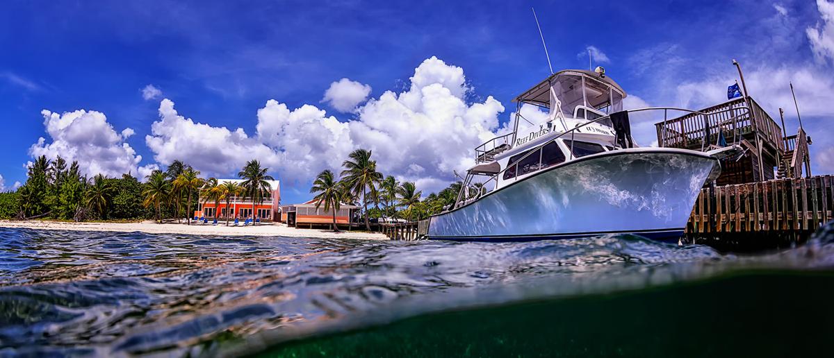 maui dreams dive company beach resort