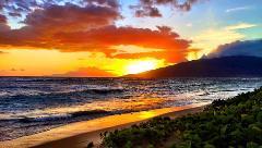 maui dreams dive company sun