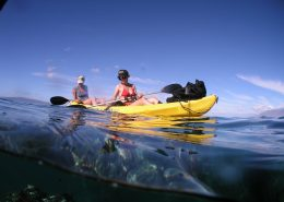 maui kayak adventure kayakersoverunderreef e