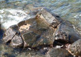 maui nei native expeditions Hauola Stone