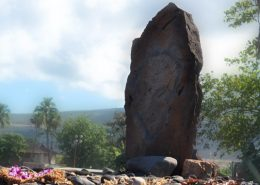 maui nei native expeditions stone
