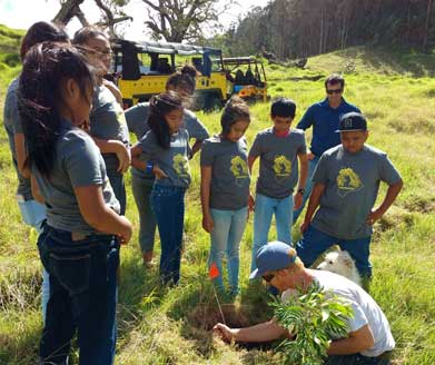Hawaii Legacy Tours Youth Tree Planting