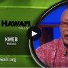 pbs hawaii insights