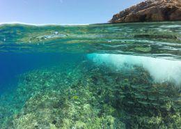 Redline Rafting Reef Water Land Shot