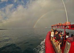 Redline Rafting Rainbow