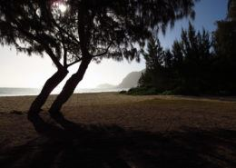 oahu photography tours beach shadow
