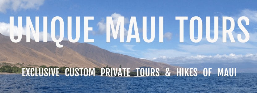 Unique Maui Tours